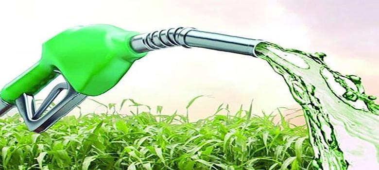 La ética detrás de los biocombustibles